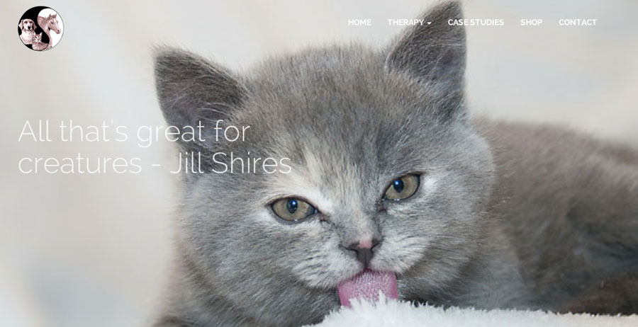 Mobile-friendly website for Jill Shires